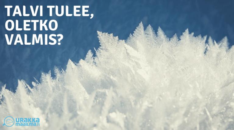 Tee nämä 5 asiaa ennen talvea